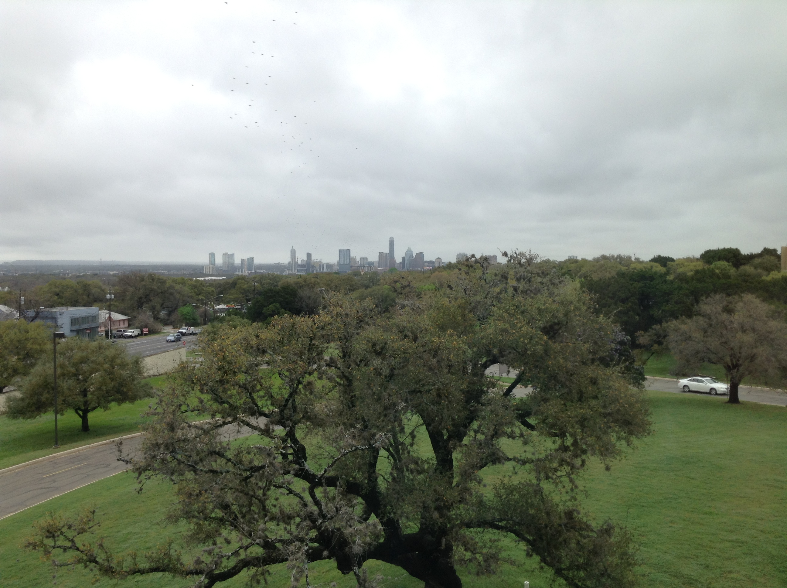 View of downtown Austin